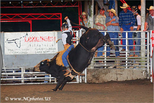 Stegall's Arena Bull Riding