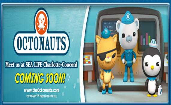 Meet The Octonauts At Sea Life Charlotte Concord Aquarium