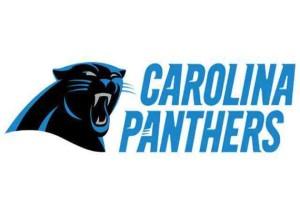 2015 Carolina Panthers Season